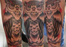 Owl Arm