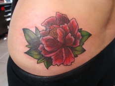 Peony Cover Up